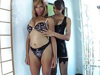 Two hot shemales do handjob for each other