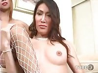 Two ladyboys and one stud threesome