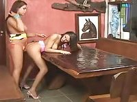Flaming brunette tarts nailing on the table