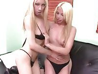 Blonde Tgirls twosome is for your satisfaction