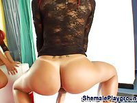 Shemale tugs her cock hard