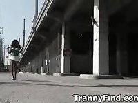 Tranny hooker