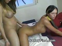 Busty tranny fucks girl